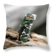 Emerging Ash Borer With Fungus Throw Pillow