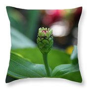 Emerging Into Summer Throw Pillow