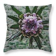 Emerging Pincushin Throw Pillow