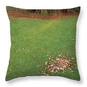 Empty Lawn With A Little Heap Of Leaves Scraped Together Throw Pillow