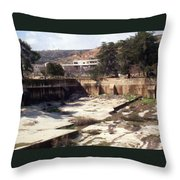 Empty Pool Throw Pillow