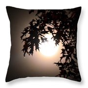 Enchanted By Moonlight Throw Pillow