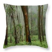Australia Enchanted Forest Throw Pillow