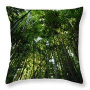 Enchanted Forest Haleakala National Park Throw Pillow