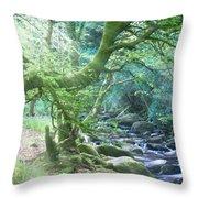 Enchanted Leprechaun Forest Throw Pillow