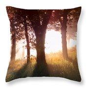 Enchanted Meadow Throw Pillow