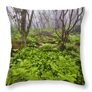Enchanted Woodland Forest In Fog Blue Ridge Parkway In North Carolina Throw Pillow