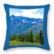 Enchanting Marvel Throw Pillow