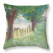 End Of August Throw Pillow