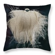 End Of The Feather Throw Pillow
