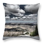 End Of The Season Throw Pillow