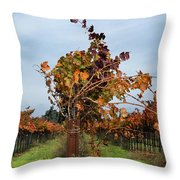 End Of The Vineyard Row Throw Pillow