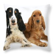English Cocker Spaniels Throw Pillow