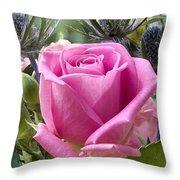 English Pink Rose Close Up Throw Pillow