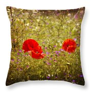 English Summer Meadow. Throw Pillow