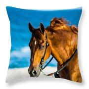 Enjoying The Breeze Throw Pillow
