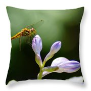 Enjoying The Moments Of The Day Throw Pillow