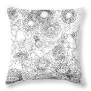 Entropic Repulsion Throw Pillow