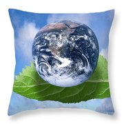 Environmental Issues Throw Pillow by Victor de Schwanberg  and Photo Researchers