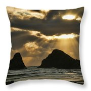 Epiphany Throw Pillow by Bonnie Bruno