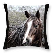 Equine Trance Throw Pillow