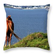 Equine View  Throw Pillow