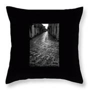 Erice Throw Pillow