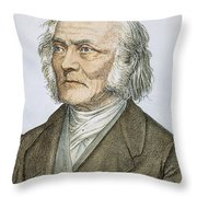 Ernst Heinrich Weber Throw Pillow