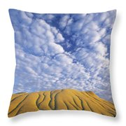 Erosion Channels On Rock, Red Deer Throw Pillow