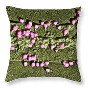 Escherichia Coli On A Cell Wall Throw Pillow
