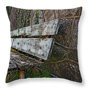 Esp Bench  Throw Pillow