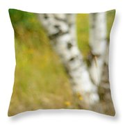 Essential. Summer Time. Impressionism  Throw Pillow by Jenny Rainbow