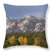 Estes Park Autumn Lake View Vertical Throw Pillow