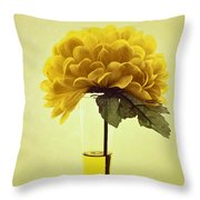 Estillo - S03-01q2 Throw Pillow by Variance Collections