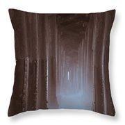 Ethereal Pier Throw Pillow