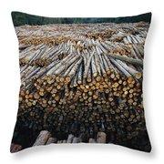 Eucalyptus Stacked Lumber Throw Pillow