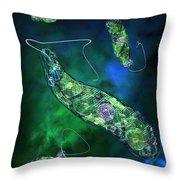 Euglena Blue Throw Pillow