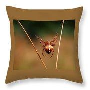 Hanging Tough Throw Pillow