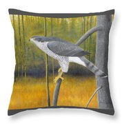 European Goshawk Throw Pillow