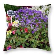 European Markets - Fuchsias Throw Pillow
