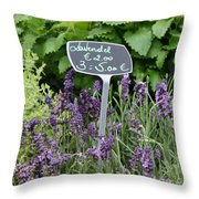 European Markets - Lavender Throw Pillow