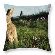 European Rabbit In A Meadow Throw Pillow