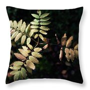European Rowan Throw Pillow