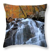 Evans Notch Waterfall Throw Pillow