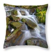 Even Flow 3.0 Throw Pillow