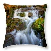 Even Flow 4.0 Throw Pillow