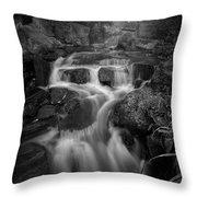 Even Flow 4.1 Bw Throw Pillow