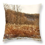 Even Now By The Gate Throw Pillow