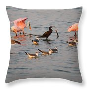 Evening Activity In The Bay Throw Pillow