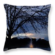 Evening Falls On Youth's Fountain Throw Pillow